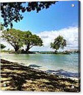Hawaiian Landscape 1 Acrylic Print