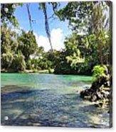 Hawaiian Landscape Acrylic Print