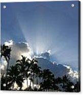 Hawaiian Landscape 16 Acrylic Print