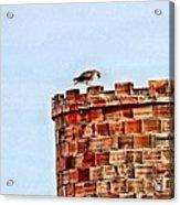 Hawk Castle Acrylic Print by Rebecca Adams