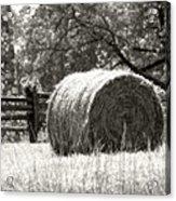 Hay Bale In A Farm Field Acrylic Print