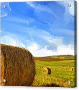 Hay Bales 2 Acrylic Print