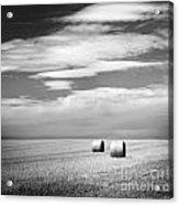 Hay Bales Black And White Acrylic Print