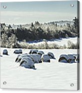Hay Bales Covered With Snow And Ice In Maine Acrylic Print