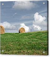 Hay Bales Acrylic Print by Steven  Michael