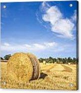 Hay Bales Under Deep Blue Summer Sky Acrylic Print