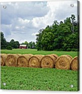 Hay Day Acrylic Print by Steven  Michael