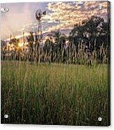 Hay Field Sunset Acrylic Print