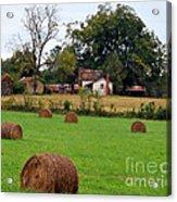 Hay From North Carolina Acrylic Print