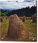 Hay In Stacks In Tatra Mountains Poland Acrylic Print