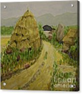 Hay Stack Acrylic Print by Lilibeth Andre