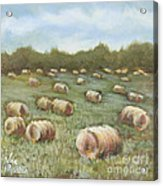 Haybales In The Field Acrylic Print by Vic  Mastis