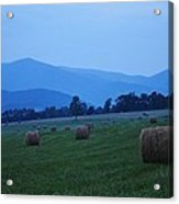 Hayfield At Dusk Acrylic Print