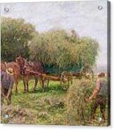 Haymaking Acrylic Print by Arthur Hopkins