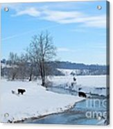 Hays Creek Winter Acrylic Print