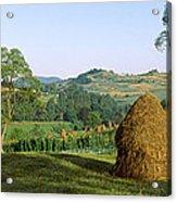 Haystack At The Hillside, Transylvania Acrylic Print