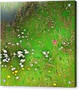 Hazy Meadow Abstract Acrylic Print