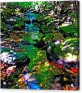 Hcbyb 276 Acrylic Print