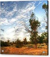 Hdr Landscape Acrylic Print