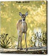 He Makes My Feet Like The Feet Of Deer Acrylic Print by Kathy Clark