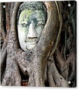 Head Of The Sandstone Buddha Acrylic Print