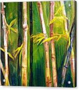 Hear The Bamboo Acrylic Print