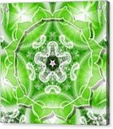 Heart Chakra Venus Acrylic Print