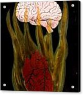 Heart Cooks Brain Acrylic Print