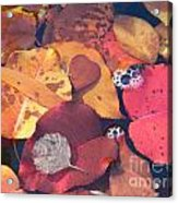 Heart Leaves Acrylic Print