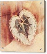 Heart Of Nature Acrylic Print