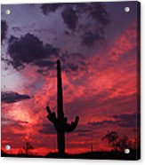 Heart Of The Sunset Acrylic Print