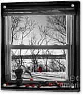 Heartbreak Acrylic Print by Joshua Lucas