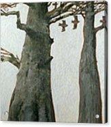 Heartwood Acrylic Print by Charlie Baird