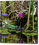 Heat Of The Afternoon - Down At The Lily Pond Iv Acrylic Print