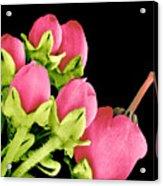Heath Flowers Acrylic Print