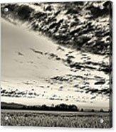 Heavenly Summer Sky Acrylic Print