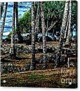 Heiau Wailua River Acrylic Print