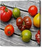 Heirloom Tomatoes Acrylic Print