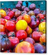 Heirloom Tomatoes V. 2.0 Acrylic Print