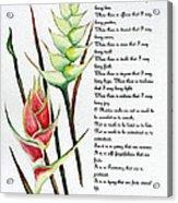 Heliconia Poem Acrylic Print