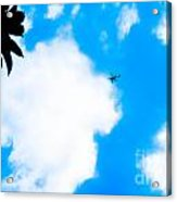 Helicopter Acrylic Print by Lisa Cortez