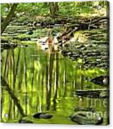 Hells Run Reflections Acrylic Print by Adam Jewell