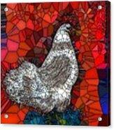 Hen Watch I Acrylic Print