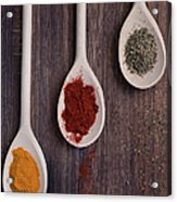 Herbs And Spices Acrylic Print