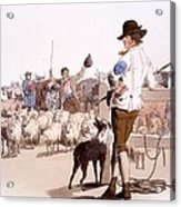 Herdsmen Of Sheep And Cattle, From The Acrylic Print by William Henry Pyne