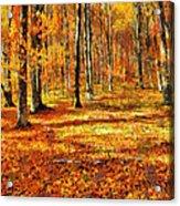 Here Comes Fall Acrylic Print