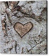 Here Is My Heart Acrylic Print