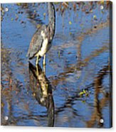 Heron And Reflection In Jekyll Island's Marsh Acrylic Print by Bruce Gourley