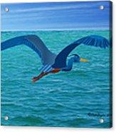 Heron Flying Over Ocean Acrylic Print