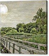 Heron Haven Boardwalk Acrylic Print